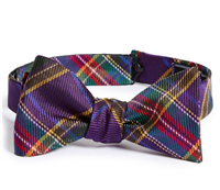 David Donahue - Silk Bow Tie