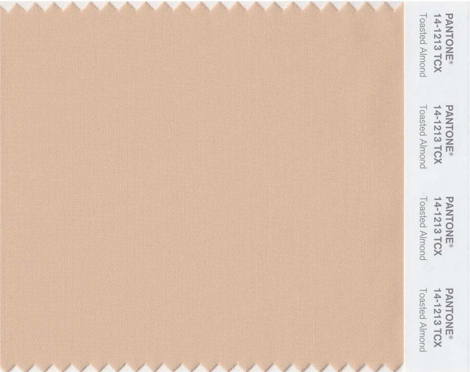 Sp15 Pantone Toasted Almond 14-1213